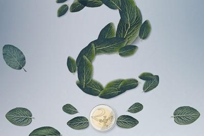 Nachhaltige Fonds: sinnvoll oder nicht?
